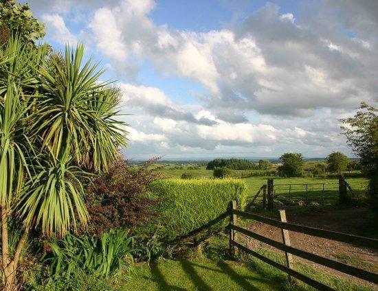 Crockgarve Bed & Breakfast: Home, sweet home