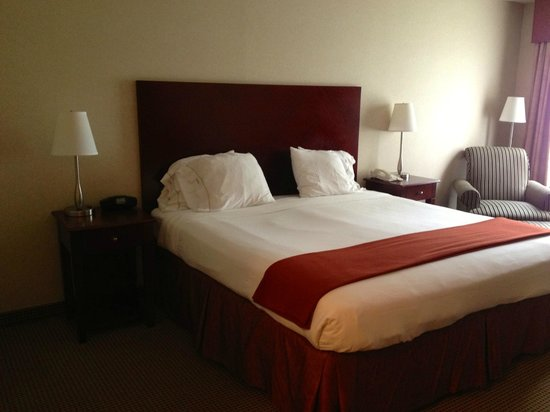 Holiday Inn Express & Suites Surrey: Guestroom