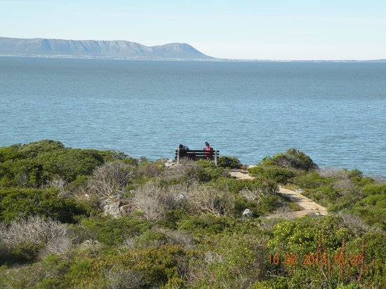 Auberge Provence: Unobstructed Ocean and Whale views across the Fynbos