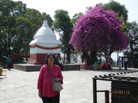 Bindhya Basini Temple: wedding-wish blessing temple