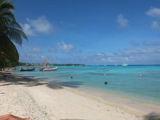Y AKA Plongee Rangiroa: specchio mare \ spiaggia fronte diving
