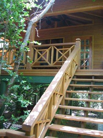 Hamanasi Adventure and Dive Resort: Treehouse 25