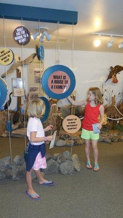 Coastal Interpretive Center: Great Exhibits