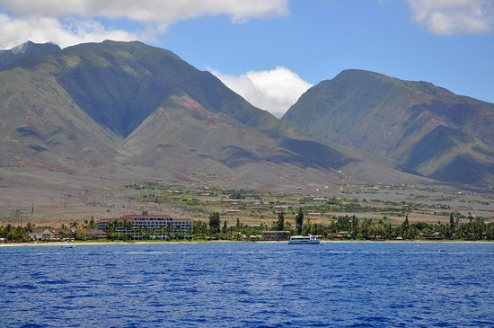 Lahaina Cruise Company : A view of Maui from the boat