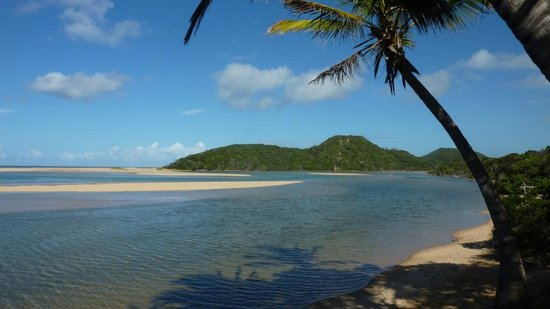 Kosi Forest Lodge: Excursion to Kosi Mouth. Fantastic snorkeling on the reef in the estuary