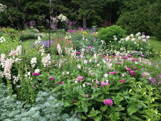 Asticou Terraces / Thuya Garden: And these ...