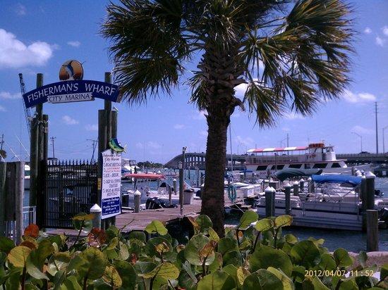 Treasure Coast Boat Rentals, Bait & Tackle: Fisherman's Wharf Marina