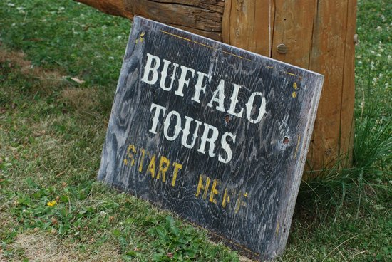Rocky Mountain Buffalo Ranch & Guest Cottage Buffalo Tours: Start here..