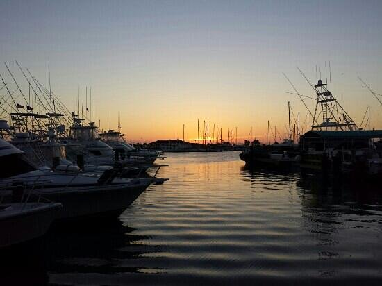 Virginia's On The Bay : sunset Virginias