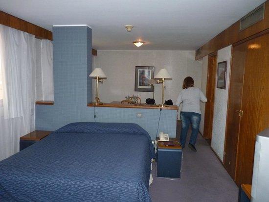 Ducal Suites Hotel: vista suite
