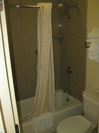 Best Western of Walterboro: BATH ROOM