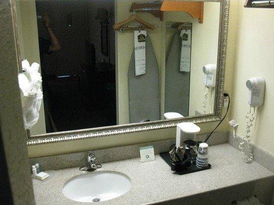 Best Western of Walterboro : SINK AREA
