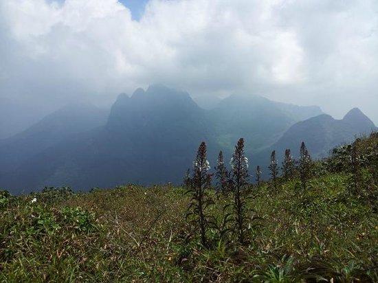 Agastya Mala: View from Agasthyamalai_5