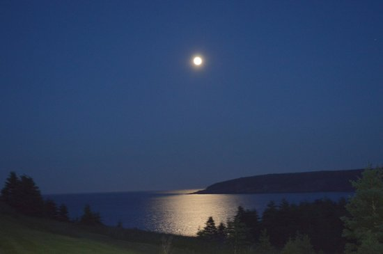 The Bread and Cheese Country Inn: Moon Over Bay Bulls Harbour
