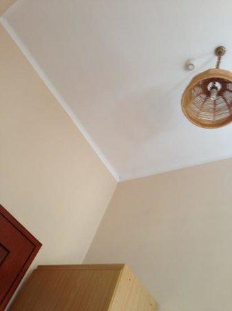 Park Hotel Salice Terme: ragno sul soffitto