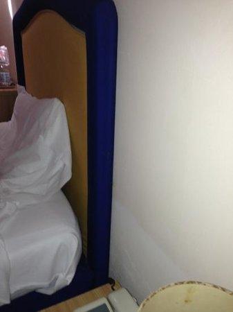 Park Hotel Salice Terme: ragno sulla testata del letto