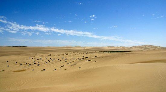 Hotel Las Dunas: Desert next door