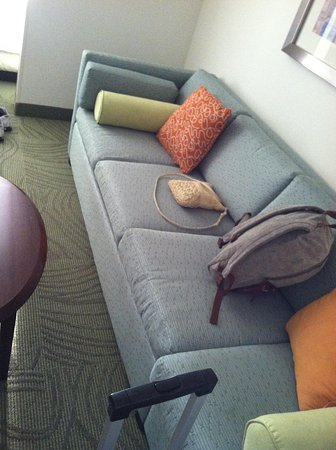 SpringHill Suites Nashville Airport: Pull out couch/bed