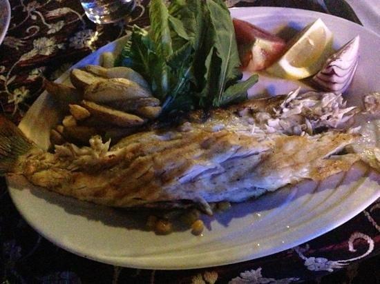 The Garden Cafe Restaurant & Bar: filetto di spigola