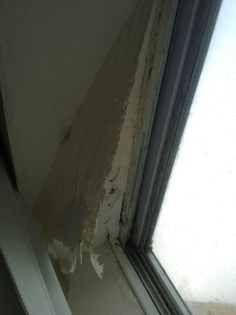 Eagle's Nest Inn: paint sheets falling from ceiling due to moisture and mold