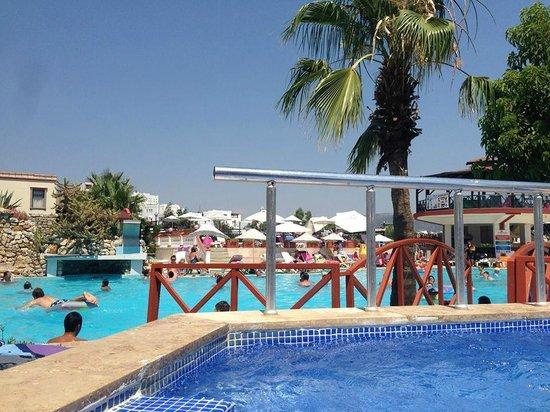 Palm Garden Hotel: Pool