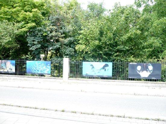 Jardin Botanique de l'université de Strasbourg : From outside