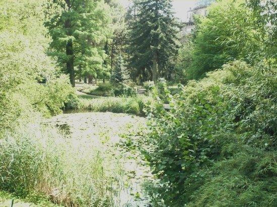 Botanical Gardens of Strasbourg University: Nice to walk around
