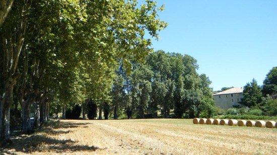 Auberge de Reillanne : The Auberge