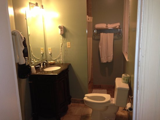 Windsor Inn: Large bath with shower. Little dark in shower but very functional and was clean.