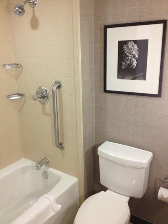 Hilton Garden Inn San Antonio Airport South: Bathroom