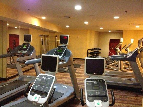 Hilton Garden Inn San Antonio Airport South: Gym