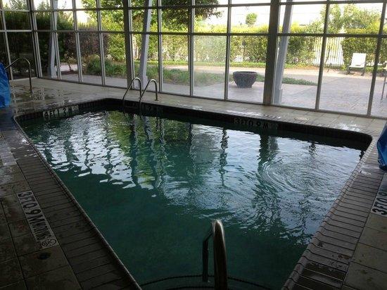 Hilton Garden Inn San Antonio Airport South: Pool