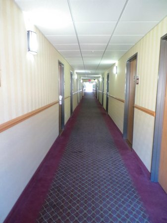 Best Western Plus Vancouver Mall Drive Hotel and Suites: The long hallway looking from elevators to room 324