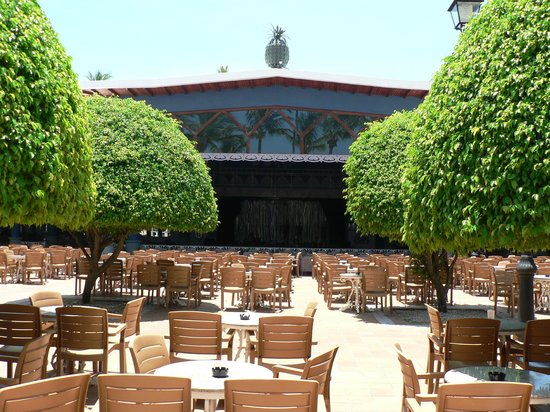 ClubHotel Riu Bambu: .