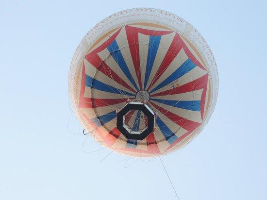 Marsham Court Hotel: Baloon