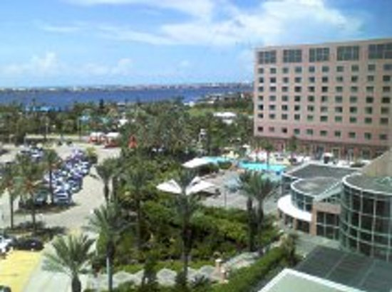 View from our room picture of moody gardens hotel spa for Moody gardens hotel
