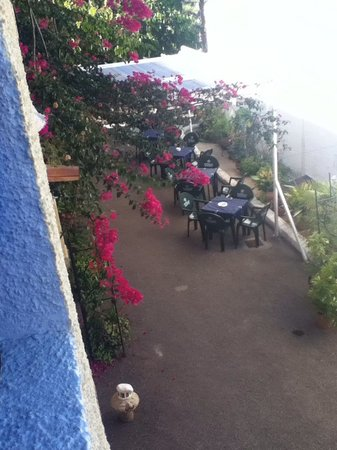 Hostal La Parata: meals, drinks and entertainment here