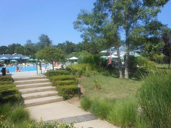 Les Magnolias Hotel : piscine