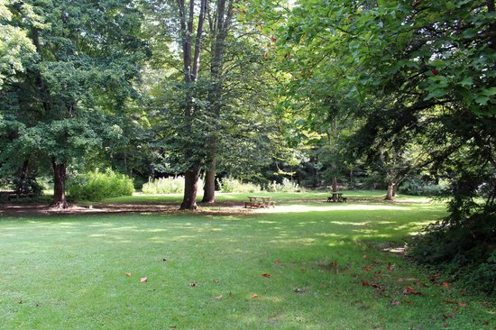 Botanical Gardens at Asheville : Tables and benches around the garden