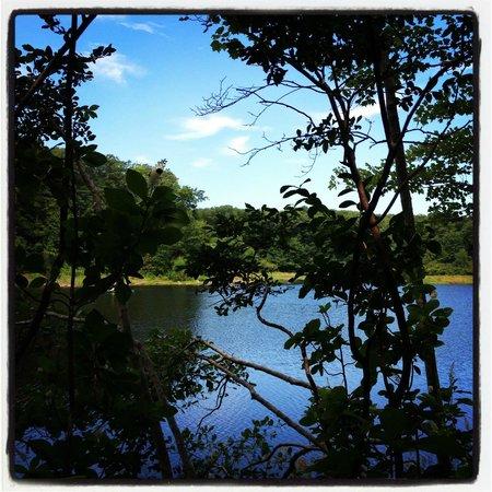 Hudson Highlands State Park: Three Lakes Trail
