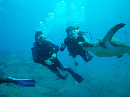 Only at Buceo Tenerife