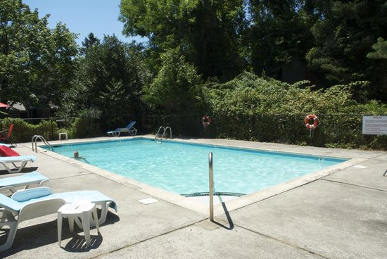 Easterner Motel: Pool Area