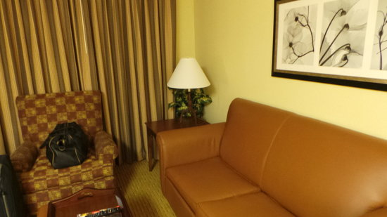 Homewood Suites by Hilton Ft. Worth-North at Fossil Creek: Sitting room