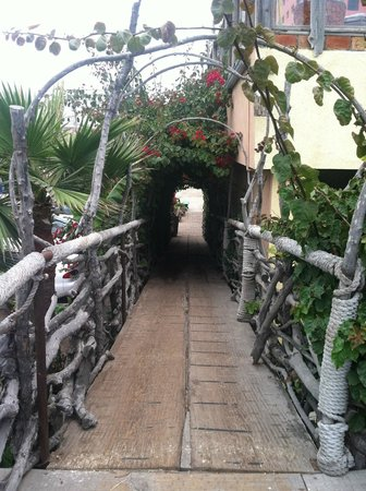 Los Pelicanos Restaurant & Bar: Colorful gardens throughout