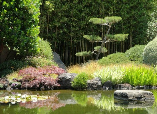 Osmosis Day Spa Sanctuary: Garden