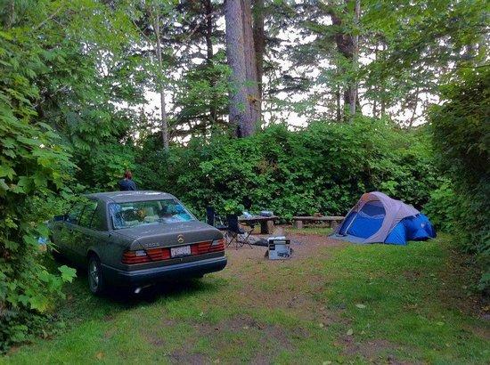 Mussel Beach Campground: campsite