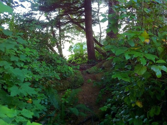 Mussel Beach Campground: private path from campsite to beach