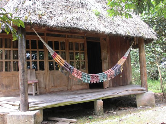 Huasquila Amazon Lodge: The front of our bungalow: lots of great time in that hammock!