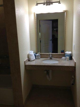 TownePlace Suites San Antonio Northwest : Handicap Bathroom