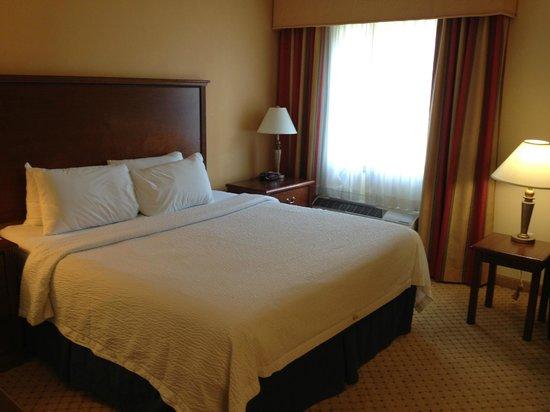 TownePlace Suites San Antonio Northwest : Standard Room